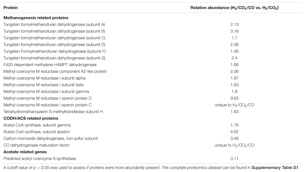 Frontiers   Proteomic Analysis of the Hydrogen and Carbon