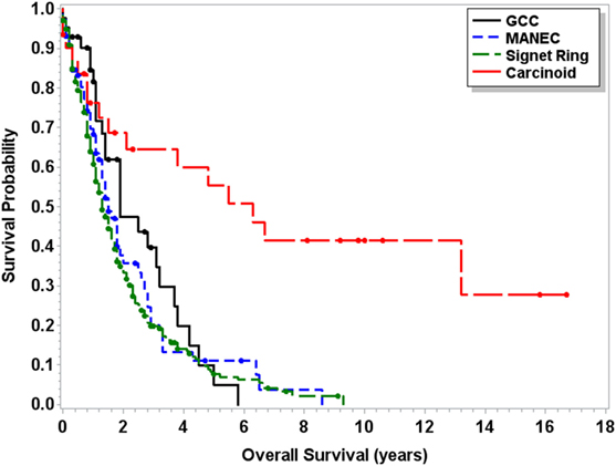 Signet Ring Cell Carcinoma Epidemiology
