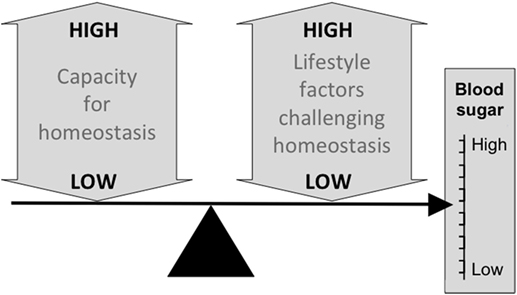 Overweight and diabetes prevention: is a low-carbohydrate–high-fat diet recommendable?