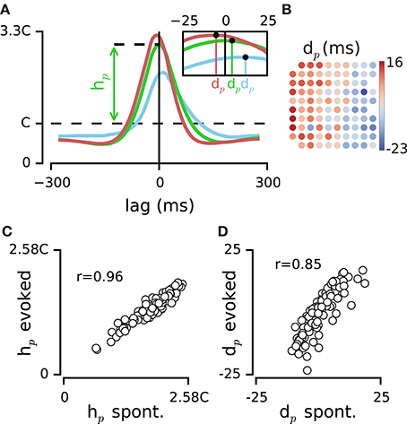 Frontiers   Dynamics of Population Activity in Rat Sensory