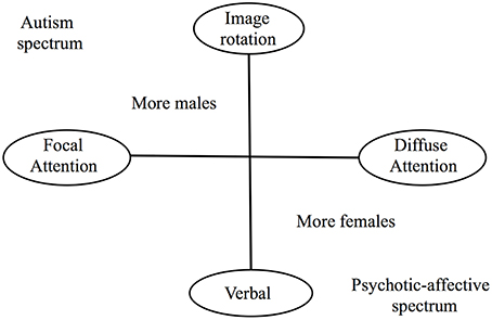 Frontiers Autism As A Disorder Of High Intelligence Neuroscience