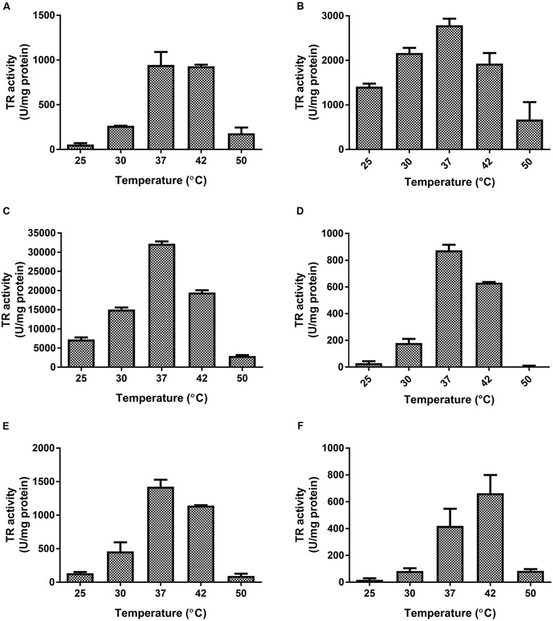 Frontiers | Flavoprotein-Mediated Tellurite Reduction
