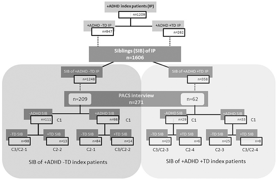 Frontiers | Familiality of Co-existing ADHD and Tic