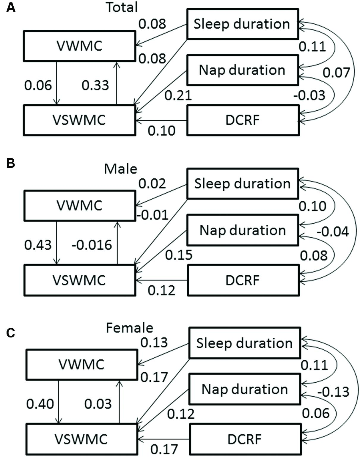gender differences in verbal working memory The present study measured verbal and spatial working memory for 15 males and 48 females males were found to have both a larger verbal memory and a larger spatial memory participants then read texts that either presented the information in both the text and diagram, or in only the text or only the diagram.