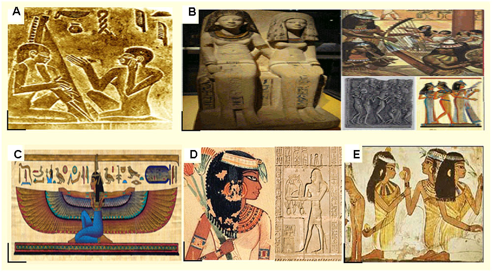 Frontiers | How Knowledge of Ancient Egyptian Women Can