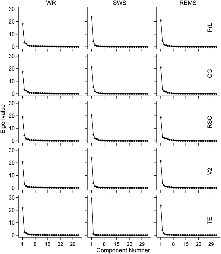 Frontiers | EEG Bands of Wakeful Rest, Slow-Wave and Rapid