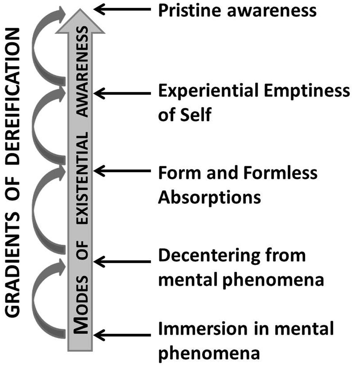 Frontiers | Defining Contemplative Science: The Metacognitive Self