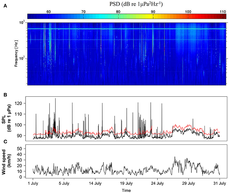 Frontiers | Underwater Ambient Noise in a Baleen Whale Migratory
