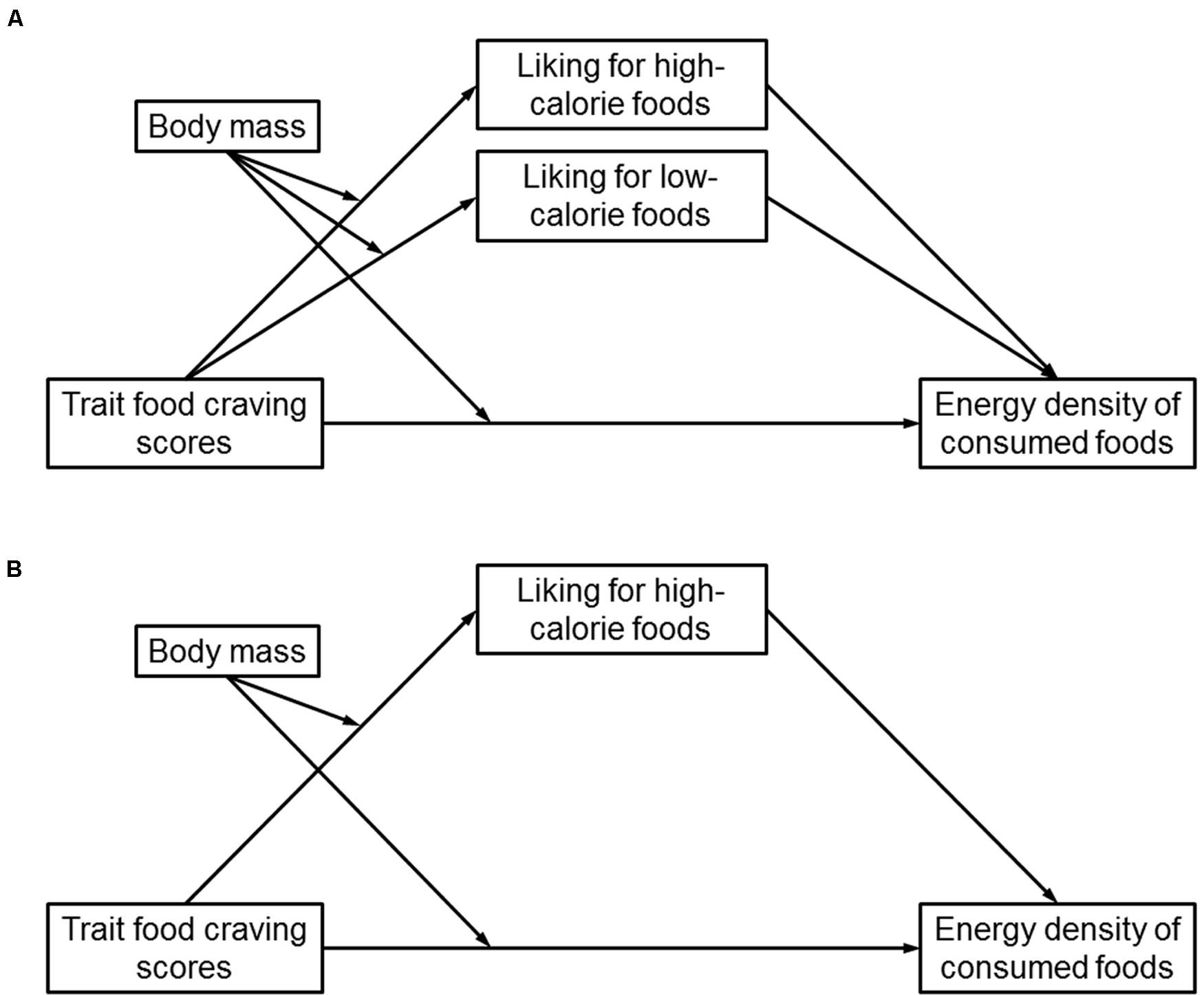 Predictors Of Food Decision Making