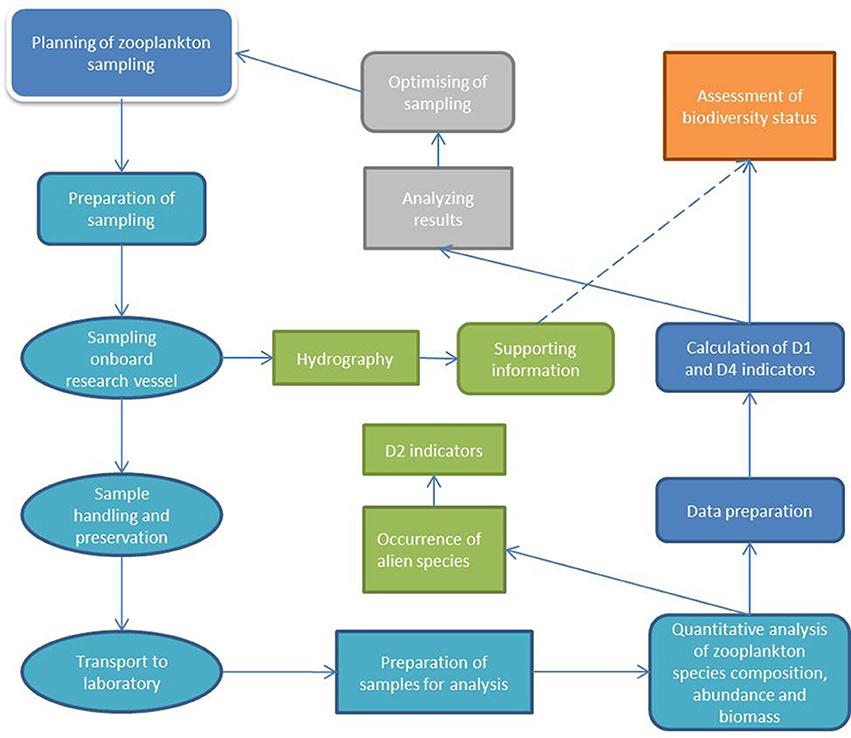 an analysis of sampling plan