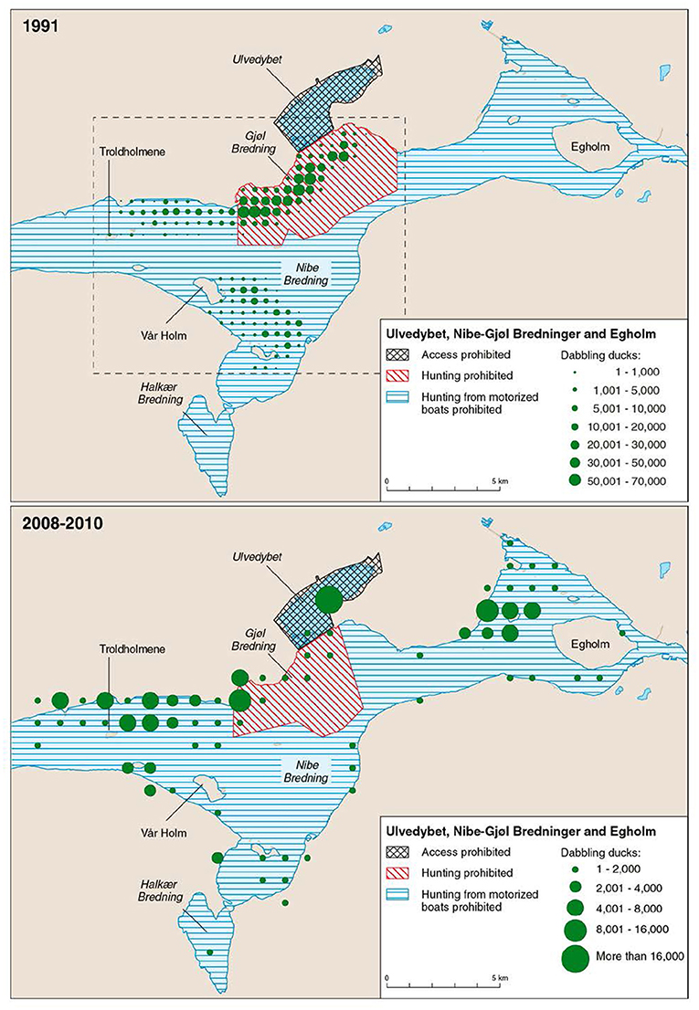 Frontiers Long Term Patterns Of Eelgrass Zostera Marina