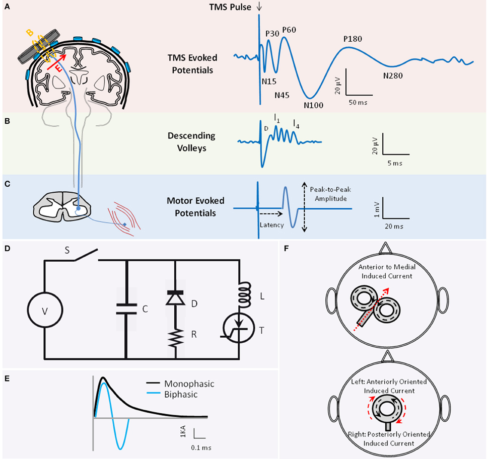 Frontiers Characterizing And Modulating Brain Circuitry Through Wire Inductor Furthermore Metal Detector Circuit Schematic