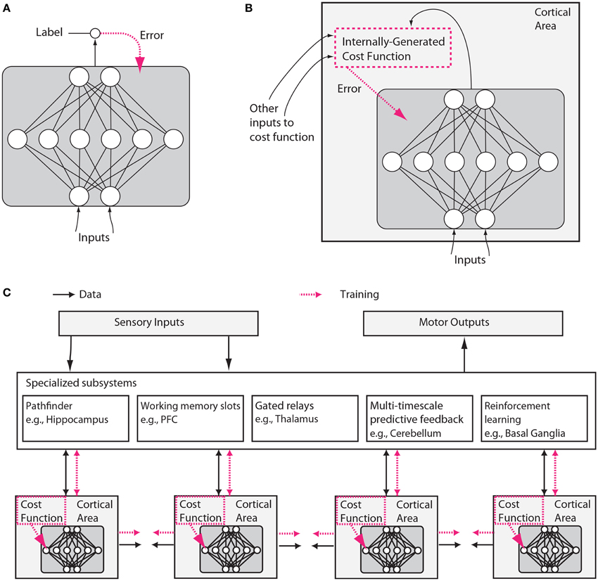 Frontiers | Toward an Integration of Deep Learning and