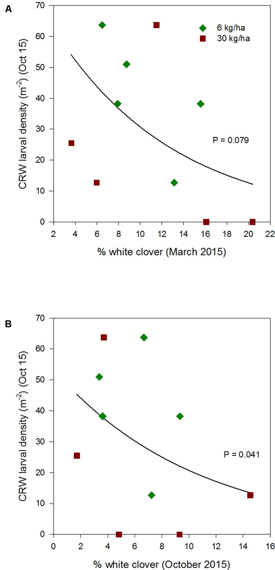 frontiers does white clover (trifolium repens) abundance in white clover flower tattoo www frontiersin org
