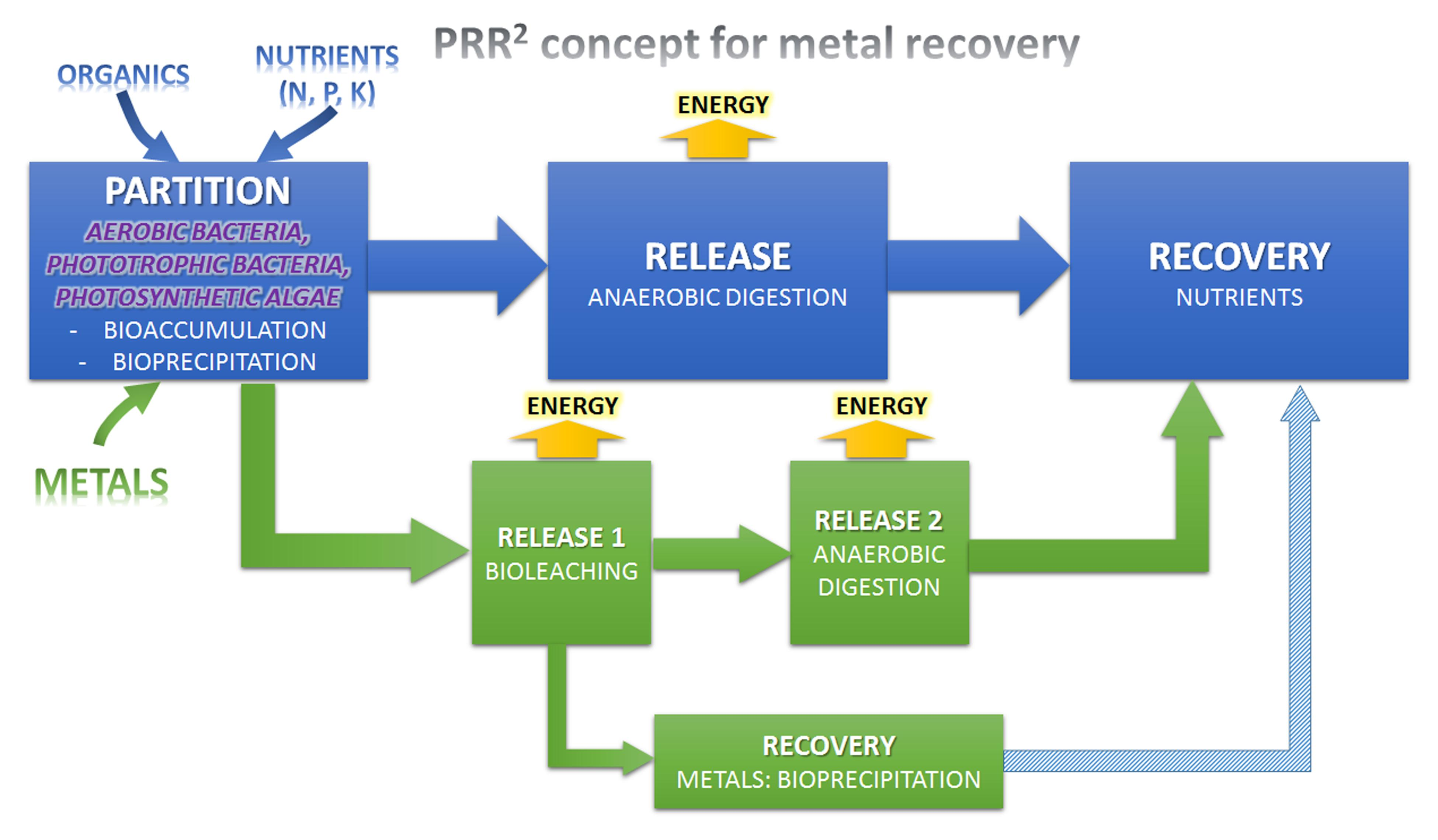 Recovery Co2 Plant Manual Ebook Biogas Or Gobar Gasplant Diagram Urdu Download Powerpoint Array Frontiers Resource From Wastewater By Biological Rh Frontiersin Org