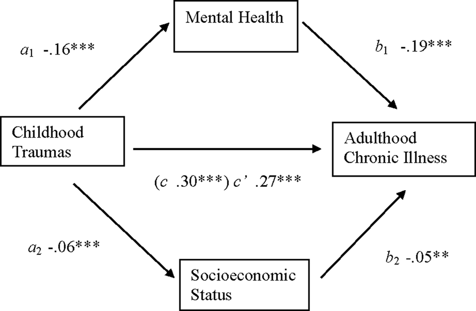 how socioeconomic status impacts on health Learn how socioeconomic status affects psychological and physical health, education and family well-being.