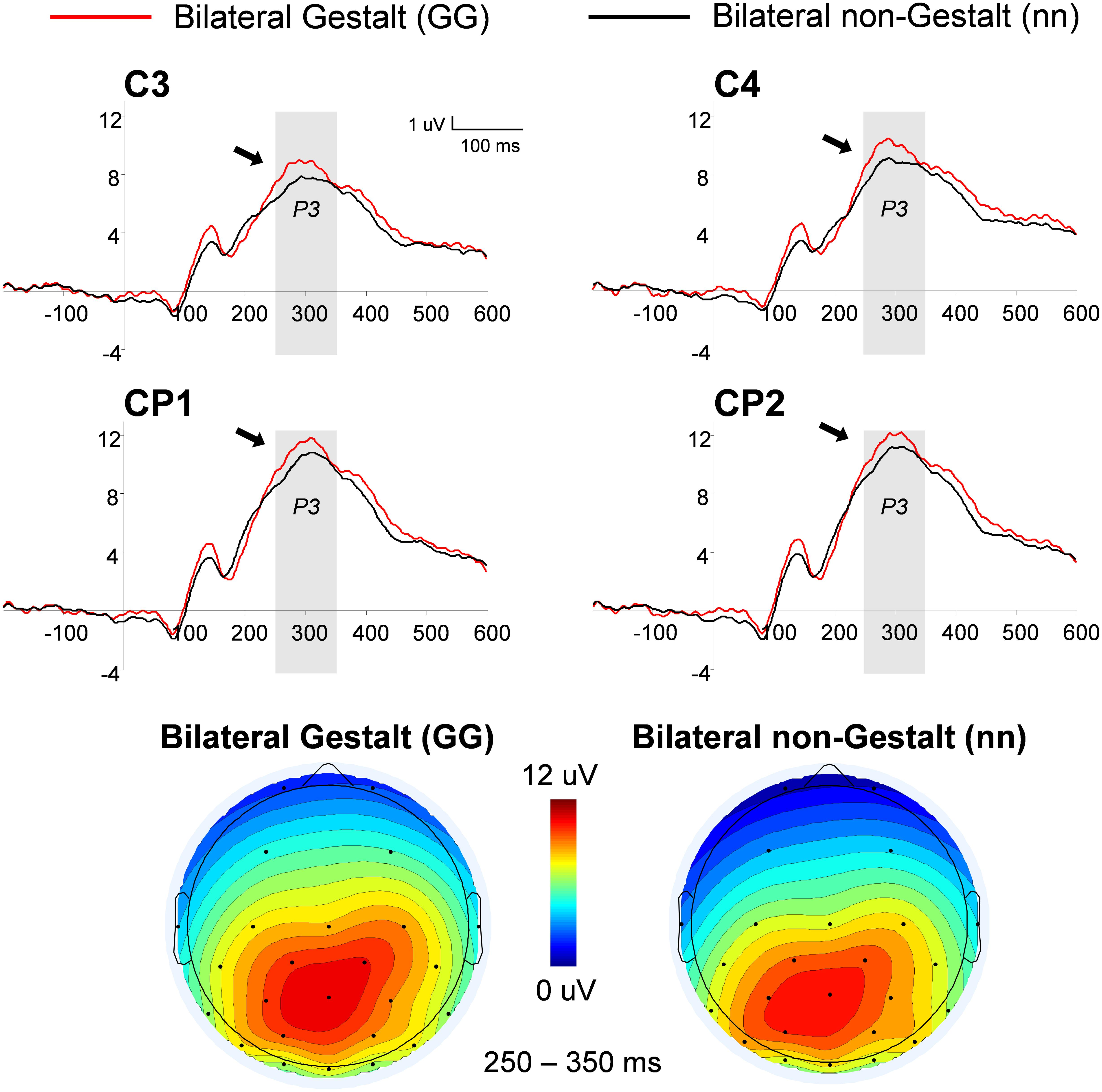 Frontiers Gestalt Perceptual Organization Of Visual Stimuli