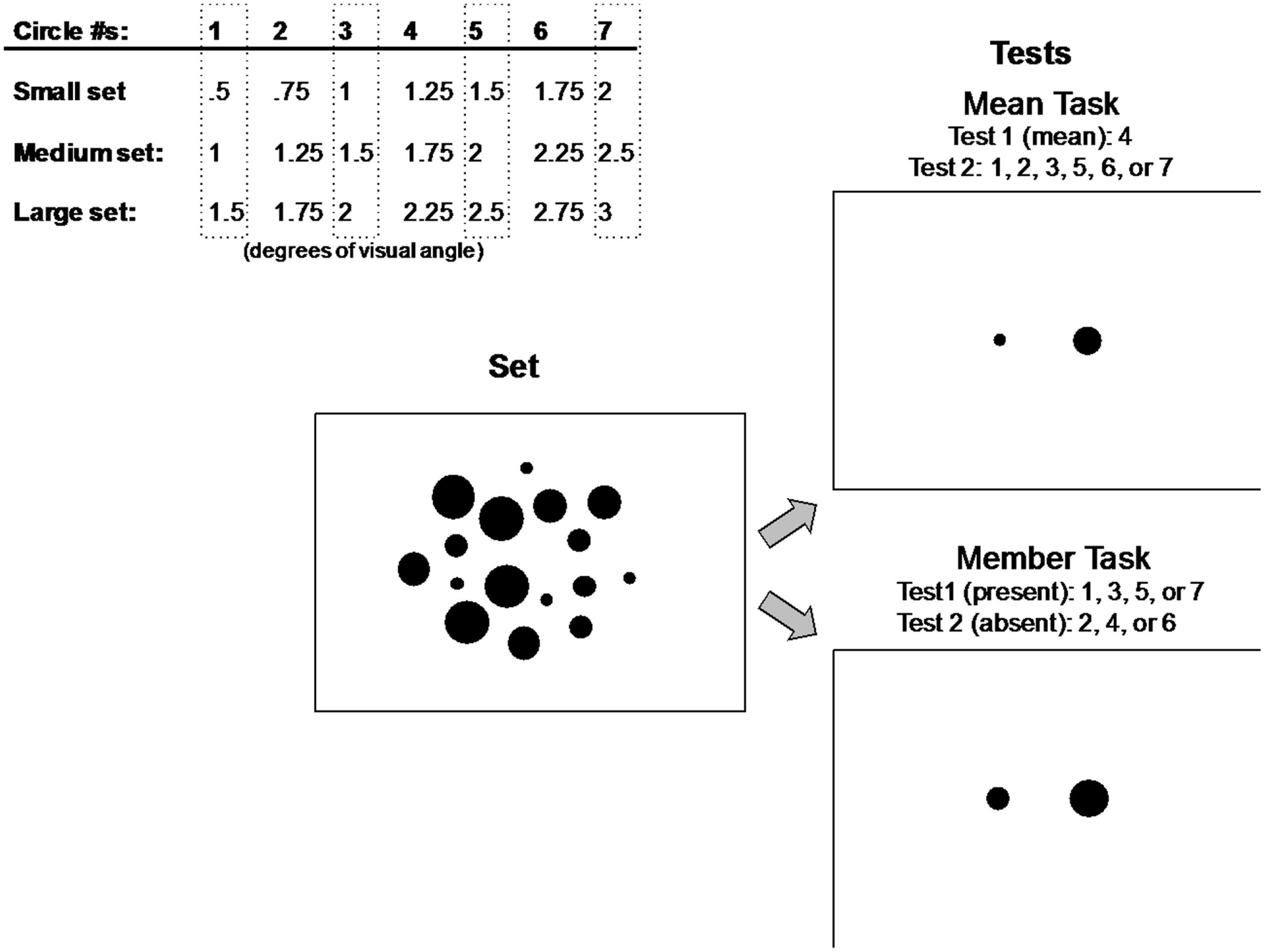 Larger Trial Of Experimental Autism >> Frontiers Perceptual Averaging In Individuals With Autism Spectrum