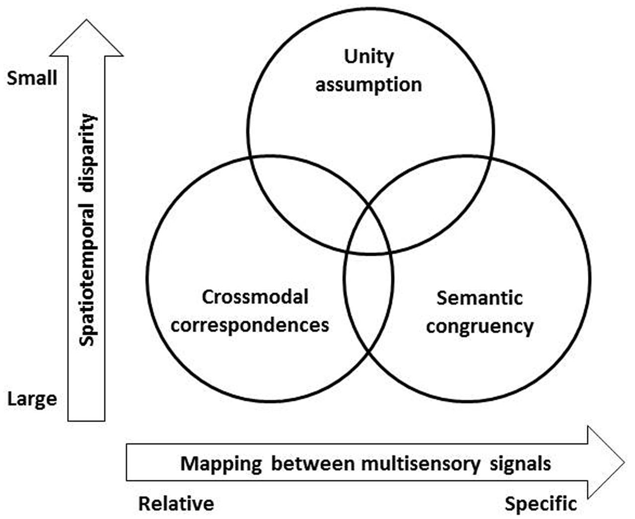 The role of olfaction in human multisensory development