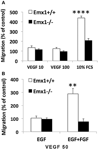 Frontiers | Deciphering the Role of Emx1 in Neurogenesis: A