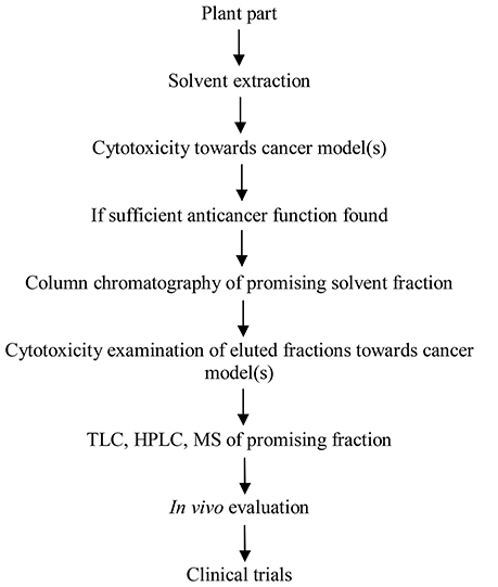 The main steps in the development of anticancer agents