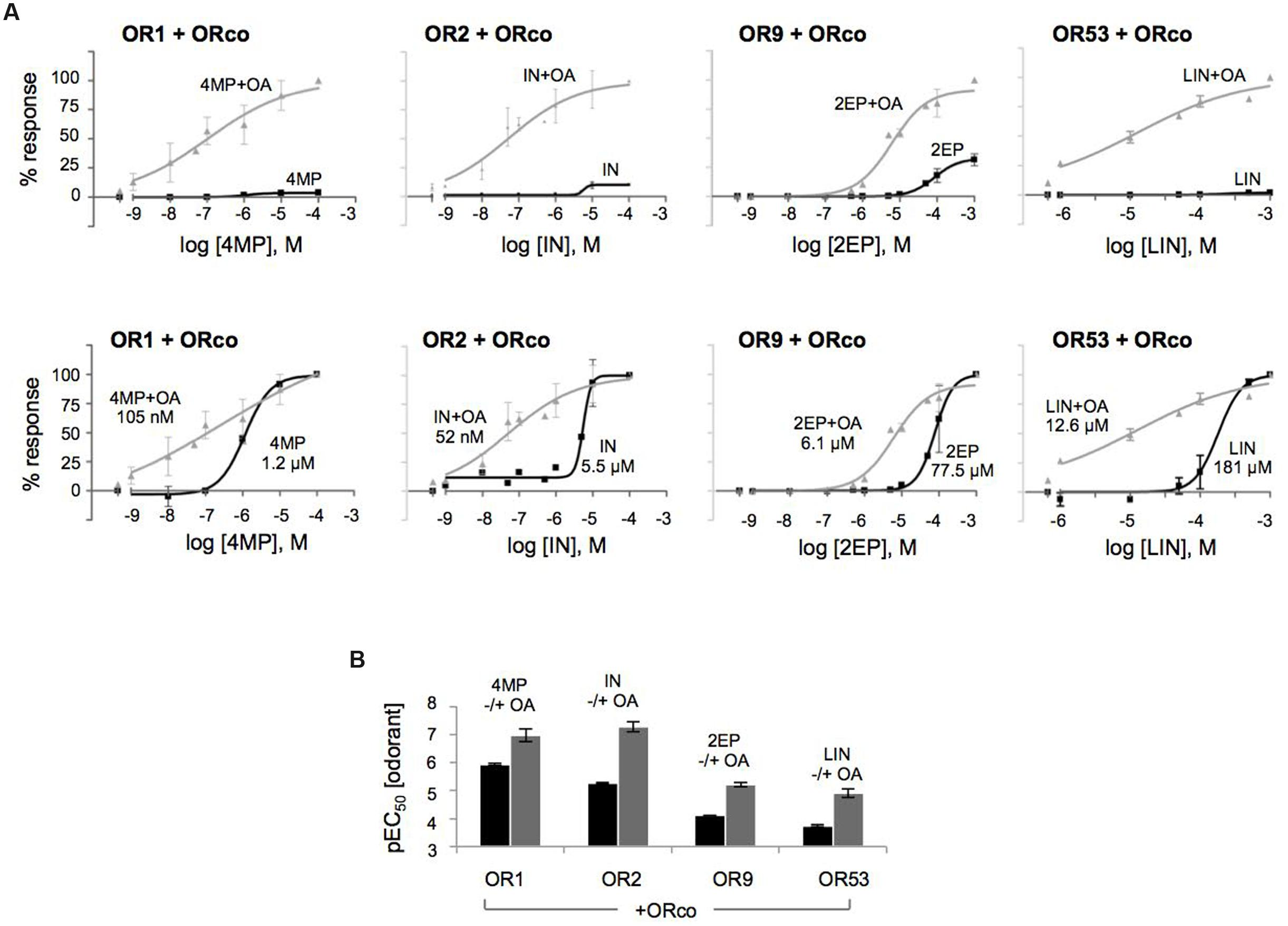 Frontiers   Positive Allosteric Modulation of Insect Olfactory