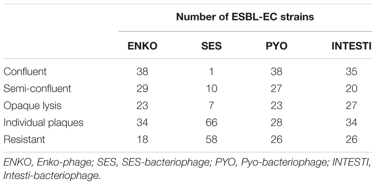 strains of esbl producing e coli Persistence of esbl producing e coli strains is associated with cattle faeces • persistent strains of e coli were associated with serotypes o98, o55, o141 and o33 • persistence of esbl e coli strains may be associated with the use of waste milk • the data should inform models for the spread of esbl strains within a dairy farm.