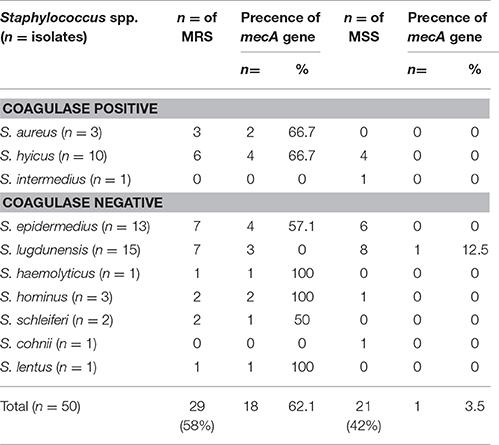 Hygiene hypothesis