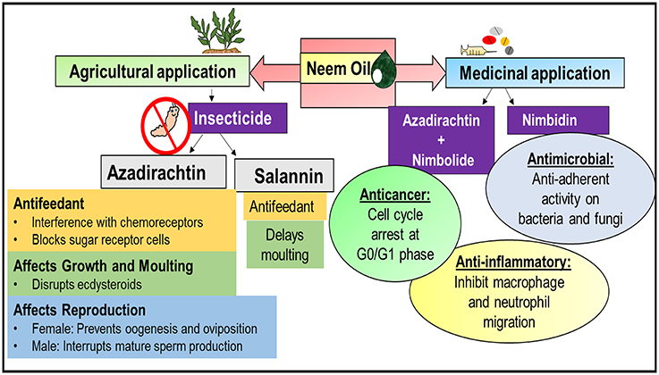 Frontiers   Progress on Azadirachta indica Based Biopesticides in