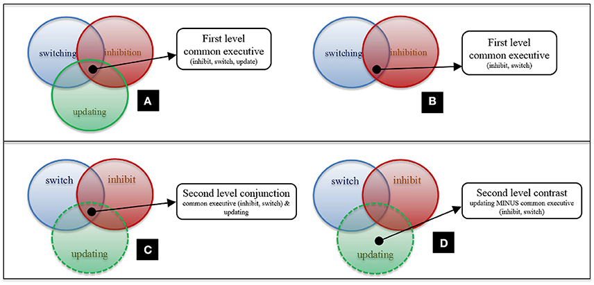 Study Little Evidence That Executive >> Frontiers Informing The Structure Of Executive Function In