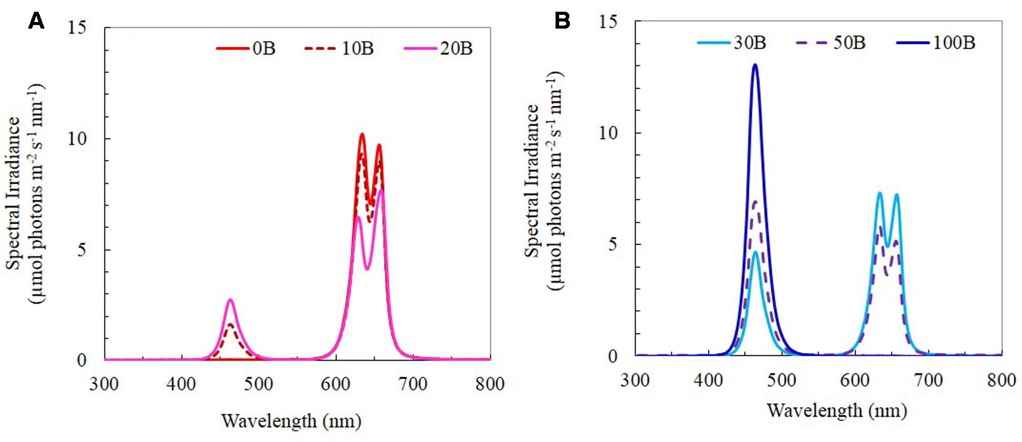 C4 carbon fixation - Wikipedia]