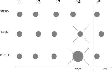 Figure 1 - Three different conditions presented to the participants with the steady, loom, and receding target as the fourth stimulus in a series of five (t1–t5).