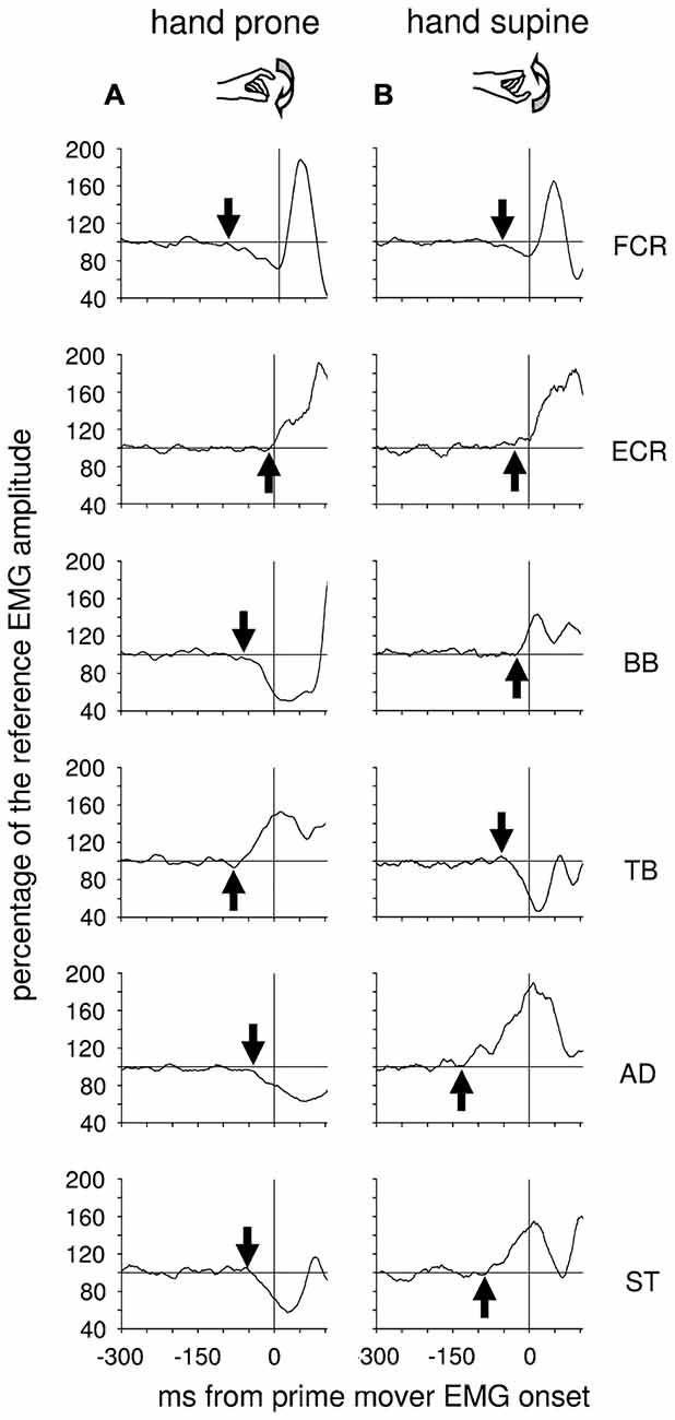 Frontiers The Organization And Control Of Intra Limb Anticipatory Block Diagram Egt Emg Cursor System Eye Gaze