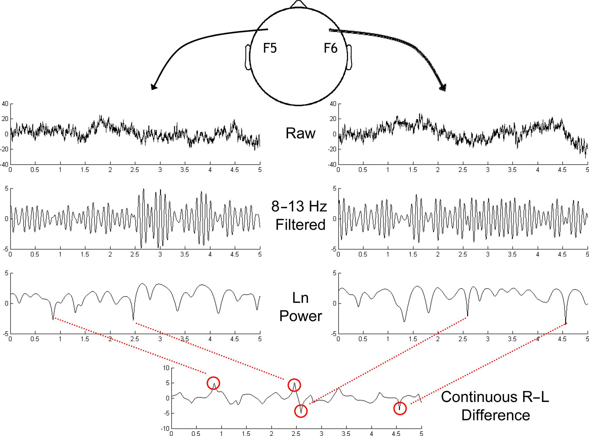 Frontiers Deconstructing The Resting State Exploring Block Diagram Of Eeg Figure 3 Schematic