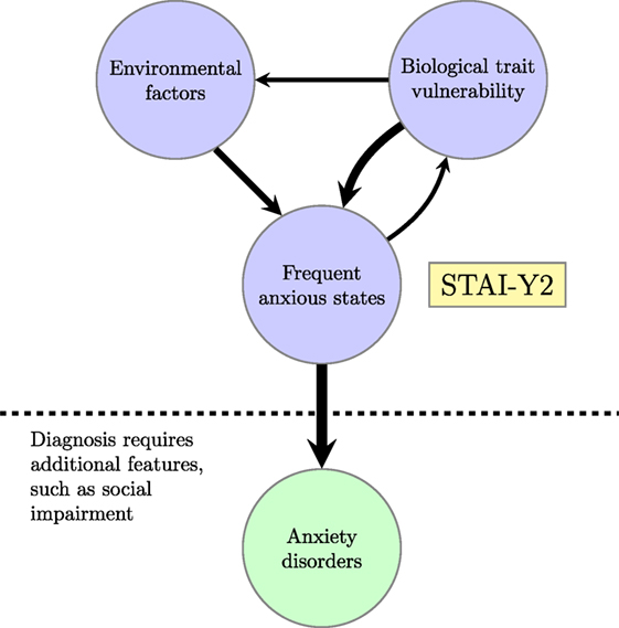 Anxiety May Alter Processing Of >> Frontiers Modeling Trait Anxiety From Computational