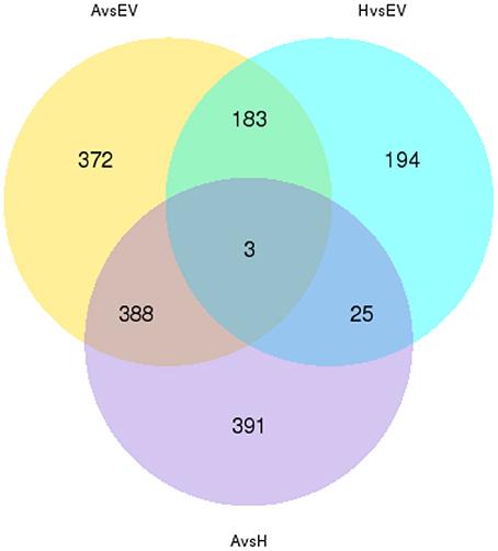 Gene expression profiling