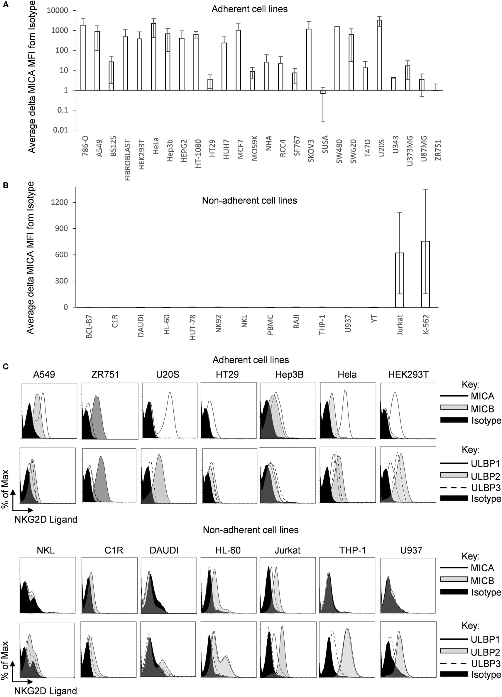 Frontiers | MICA Expression Is Regulated by Cell Adhesion and