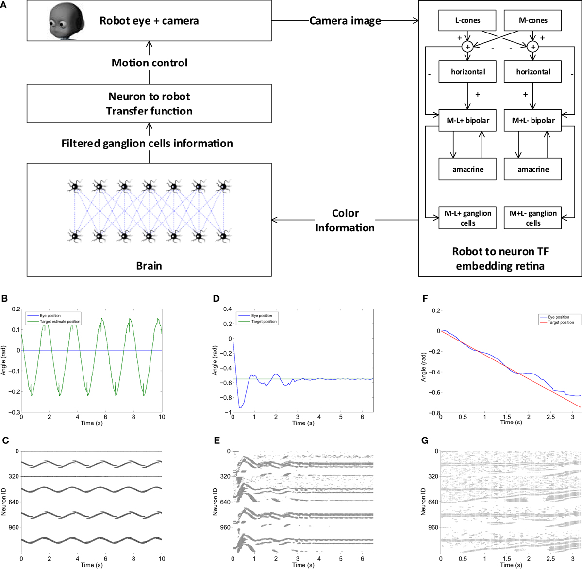 Frontiers | Connecting Artificial Brains to Robots in a