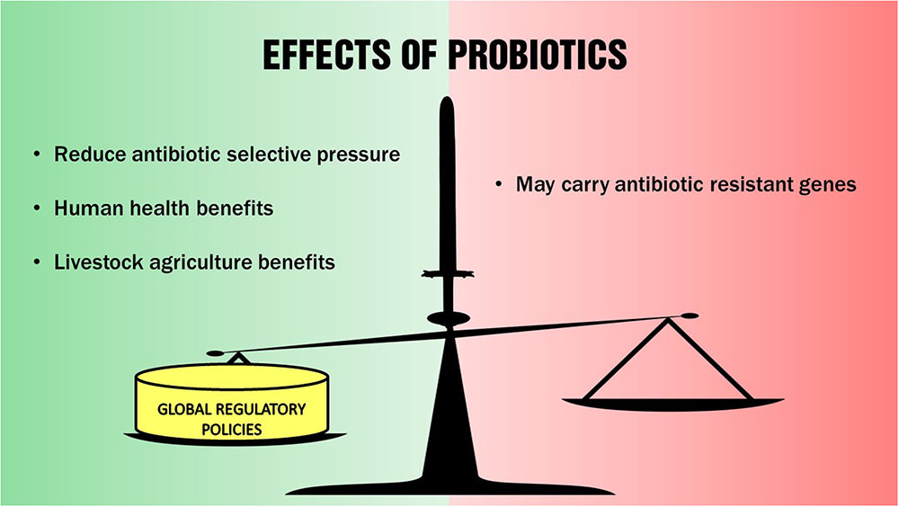 Probiotics For  Month Old Natures Way