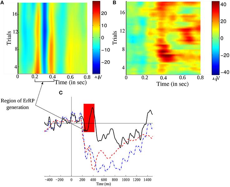 Frontiers | A Generic Transferable EEG Decoder for Online
