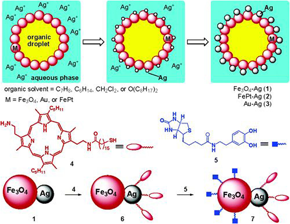 Frontiers An Overview Of Pickering Emulsions Solid