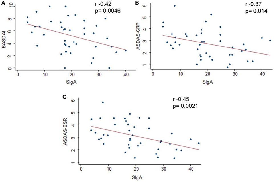 Frontiers | Higher Levels of Secretory IgA Are Associated