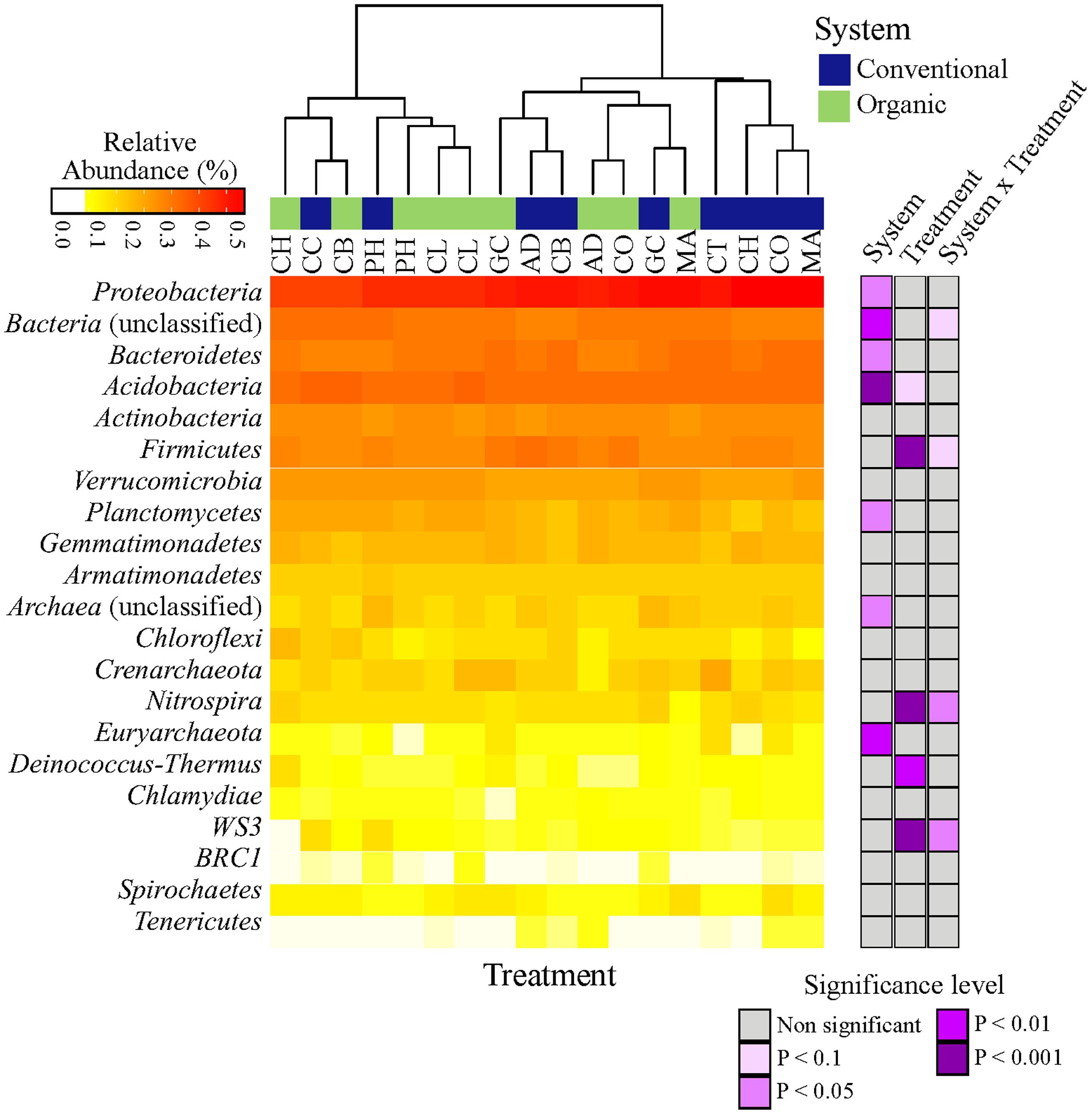 Frontiers | Soil Microbiome Is More Heterogeneous in Organic Than in
