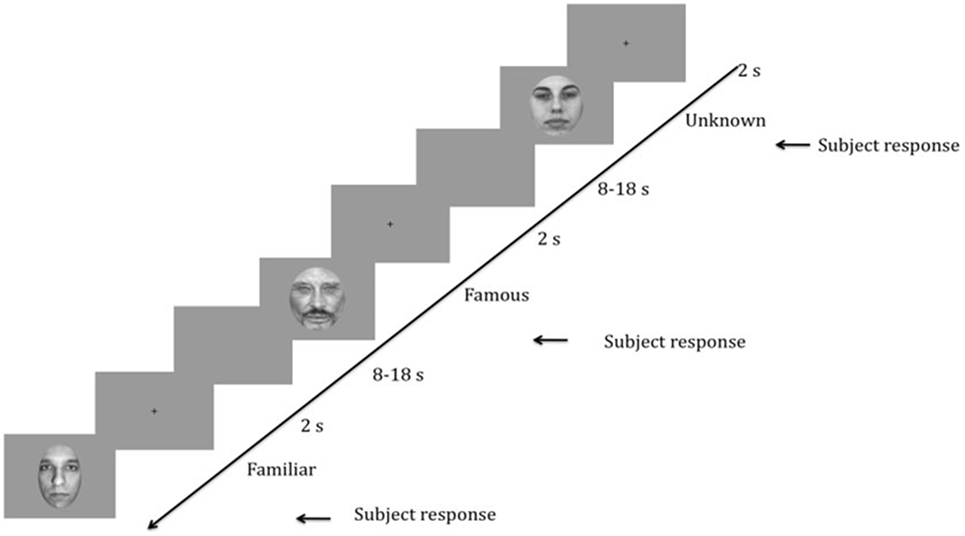 Frontiers | Implicit Recognition of Familiar and Unfamiliar