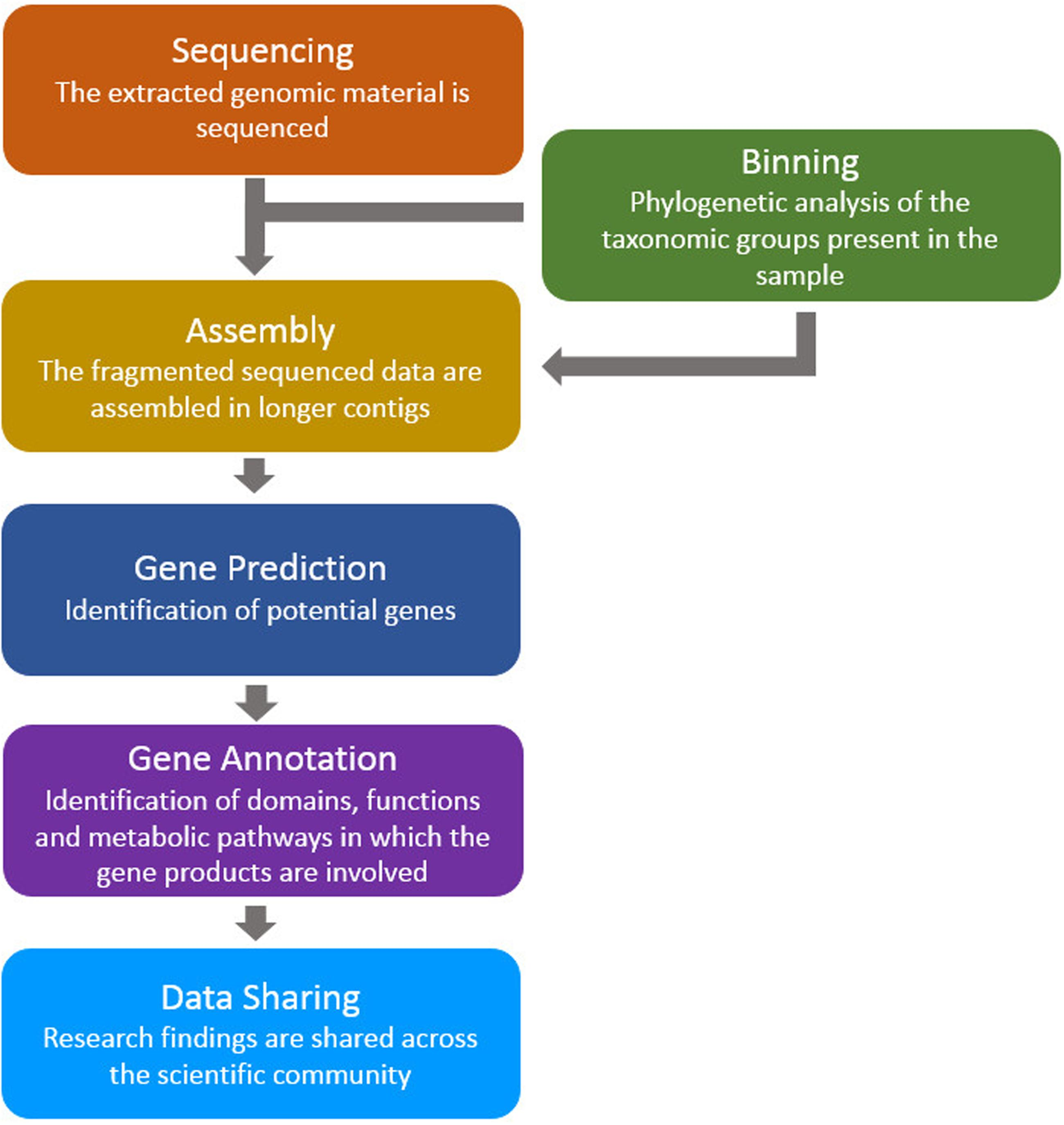 Frontiers A Review Of Bioinformatics Tools For Bio Prospecting