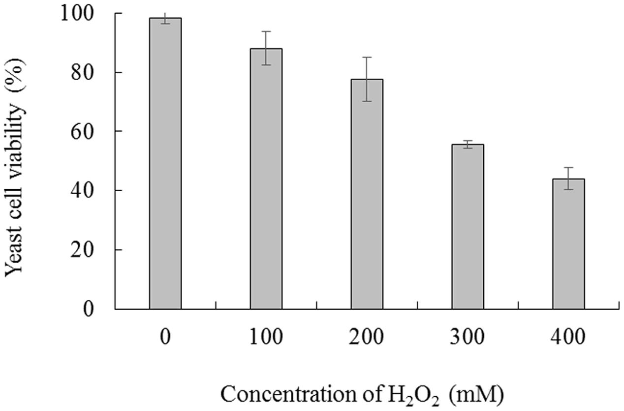 Frontiers | Influence of Oxidative Stress on Biocontrol Activity of