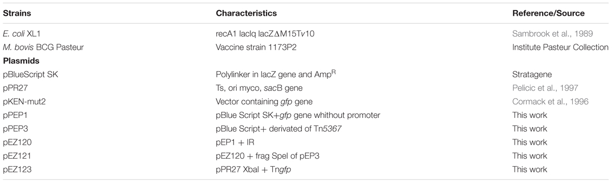Frontiers | Detection of a Putative TetR-Like Gene Related