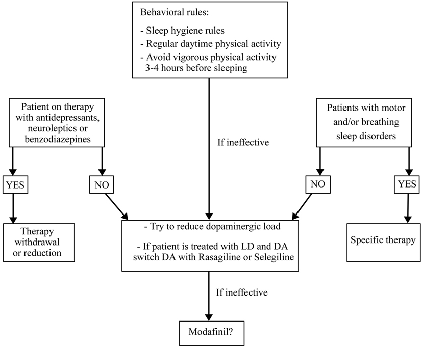 Frontiers | The Treatment of Sleep Disorders in Parkinson's Disease