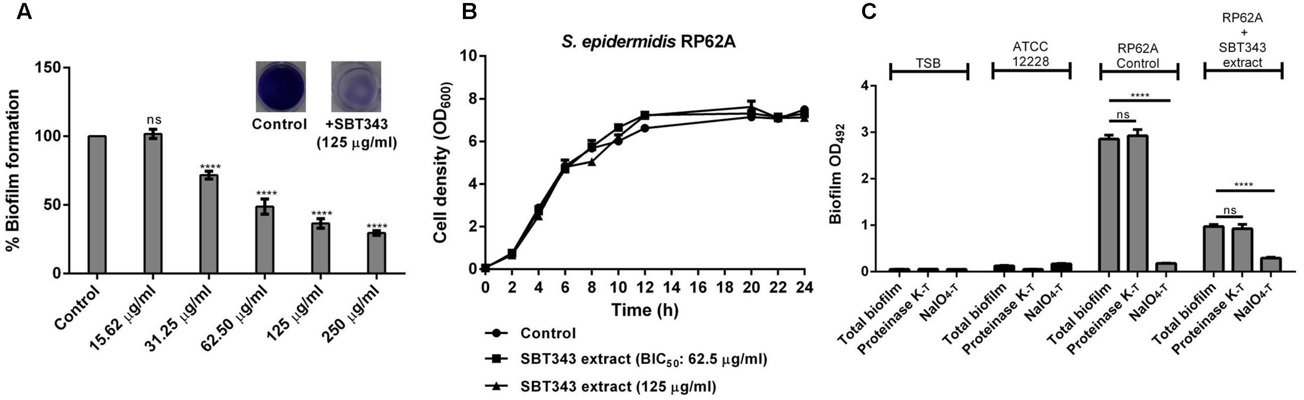 Frontiers | Marine Sponge-Derived Streptomyces sp  SBT343 Extract
