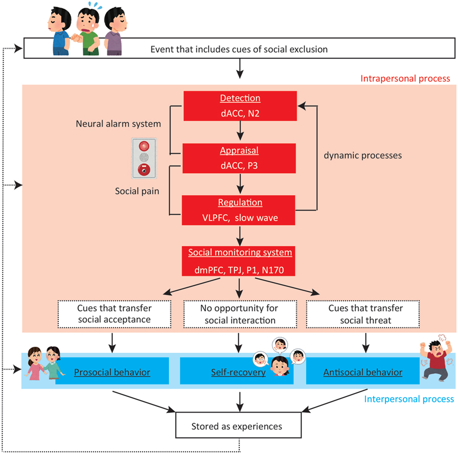 Figure 2 - A dynamic process model of social exclusion.